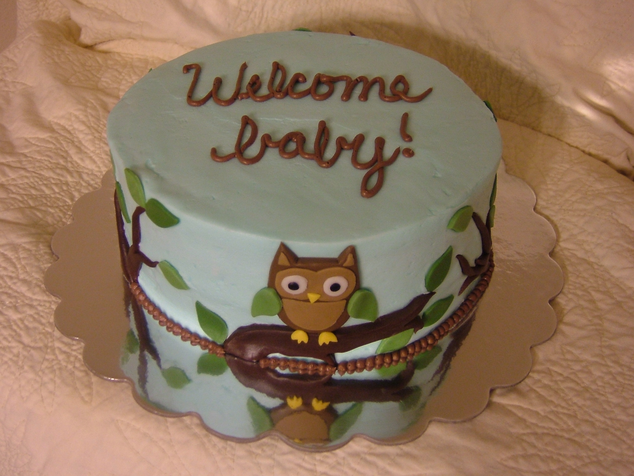 Owl Themed Baby Shower Kathryns Cake Shoppe